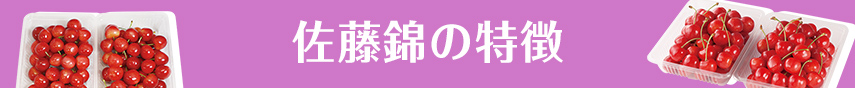 佐藤錦の特徴